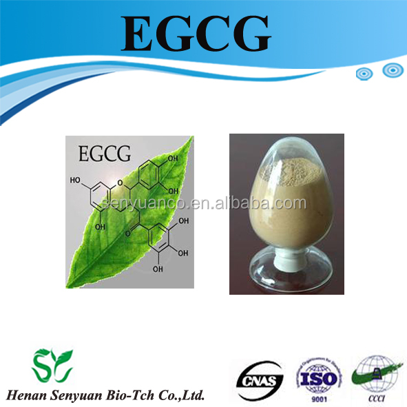Factory Supply Green Tea Extract L Theanine / EGCG / Catechin