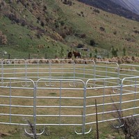 Trade assurance used horse training round pen for sale