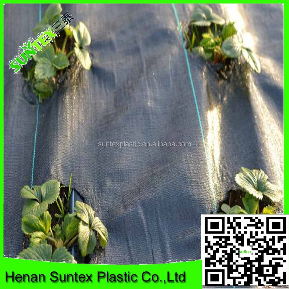 China Supplier Pp Woven Fabric Plants Ground Cover,Black Weed Mat ...