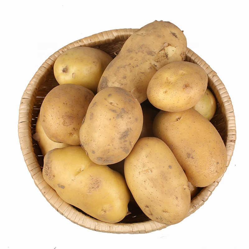 China potato buyers wholesale 🇨🇳 - Alibaba