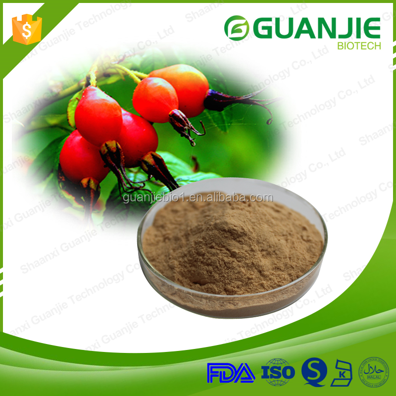 Factory Price Natural Rosehip Extract Powder,Rose Hip Extract 10:1 20:1