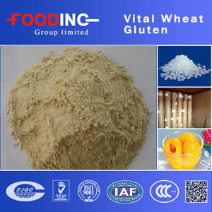 High Quality Bottom Price for Whole year, 75% 78% Food/Feed Vital Wheat Gluten Manufacturer
