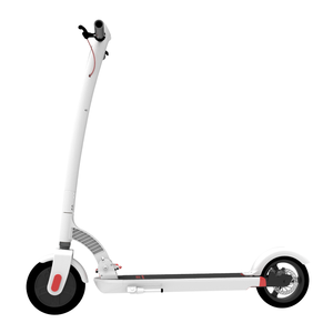 ONAN L1 Zoom Stryder Hollyburn P5 eZip E-750 Electric Scooter
