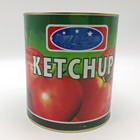 70g factory price tomato products/sauce/paste/sachet ketchup