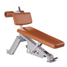 Shandong Tianzhan Abdominal Ajustável Banco/Gym fitness equipment TZ-5019/Sport equipment