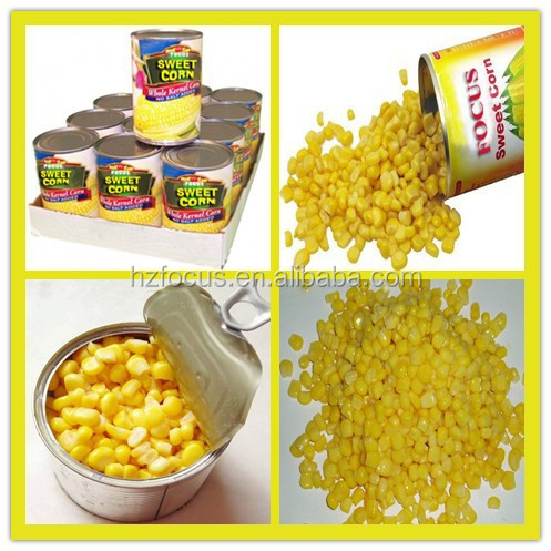 china sweet corn+canned sweet corn+made in China