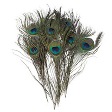 PM-012 Wholesale beautiful natural peacock feathers
