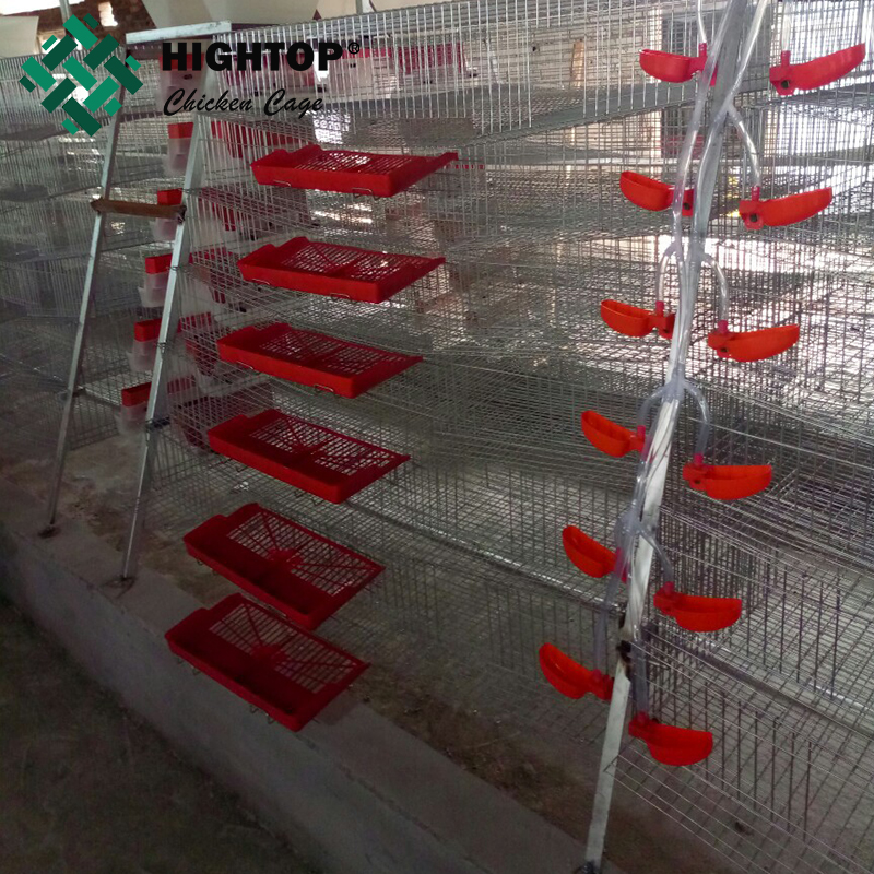 hot sale commercial automatic feeding quail wire mesh layer cage