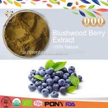 Powerful antioxidant blushwood blueberry extrac tea at factory supply