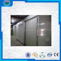 China gold supplier promotional double leaf swing door for cold room