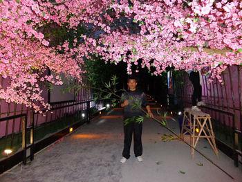 Japanese Flower Treeartificial Pink Flowering Treestall Trees