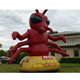 giant inflatable cartoon ant model for sale