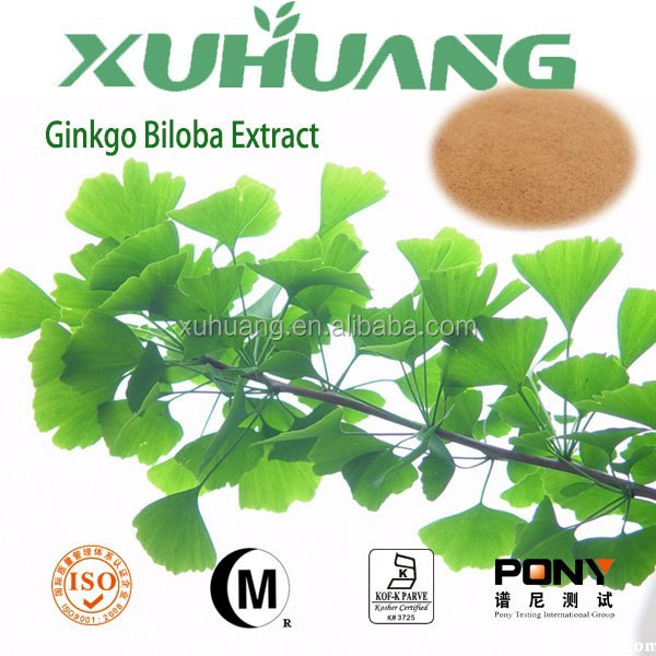 Natural herbal medicine Flavone glycoside 24% ginkgo biloba leaf extract/ginkgo biloba extract