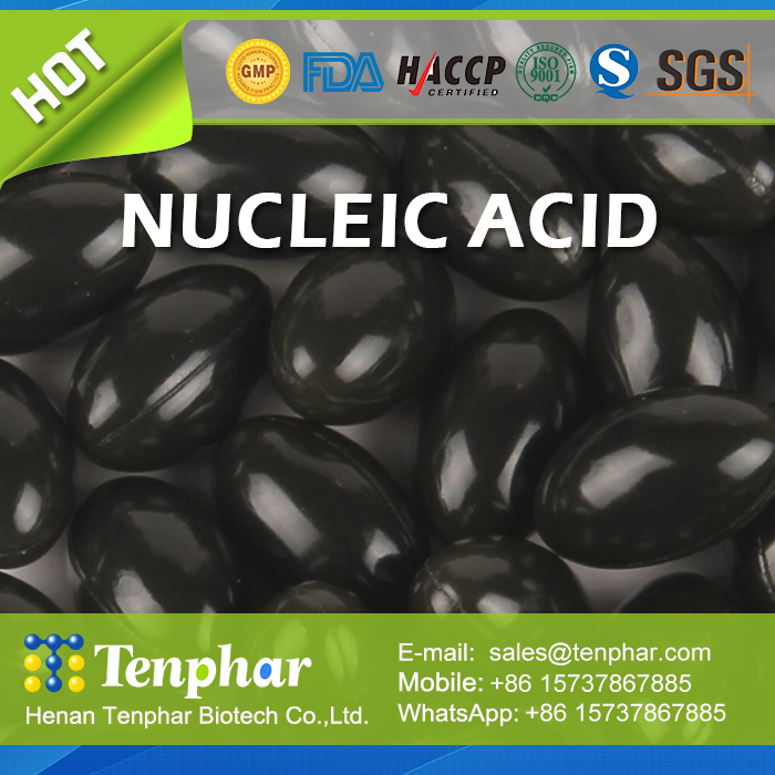 OEM Private Lable Anti-fatigue Improve Appetite Nucleic Acid Pill