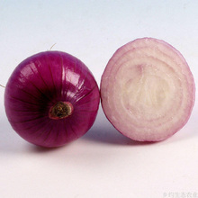 Matured Chinese Fresh Big Size Onion Price Ton