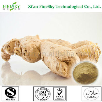 Natural Extract Of Fresh Garlic Ginger For Ginger Tea