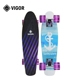 Cool City Cruiser Customized Size and Design Complete Mini Maple Skateboard For Kids