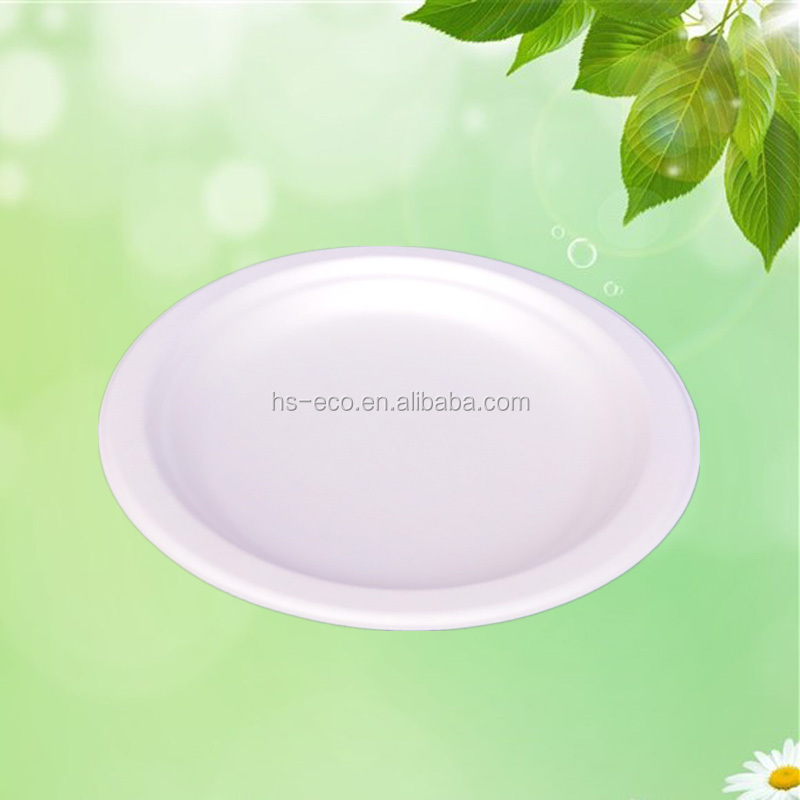GUARANTEED LOWEST PRICE! Biodegradable Disposable Paper Plate Eco friendly Sugarcane Bagasse Plates