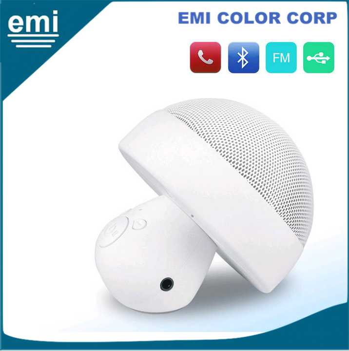 Bluetooth Speaker with Hands-Free Call Function