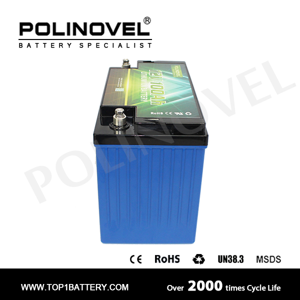 lifepo4 lithium-ion battery pack 12v 100ah