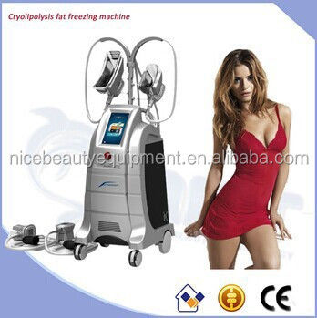 Beco Beauty Salon Equipment Freeze Fat /Coolshape/Cryotherapys ETG50-4S Hot in Spain