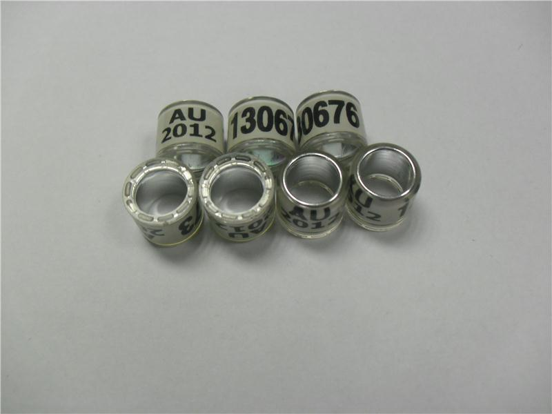 aluminum uses at home uk pigeon ring register to trending rings for birds