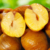 Edible Chestnut Organic Roasted Peeled Chestnut Kernel for sale