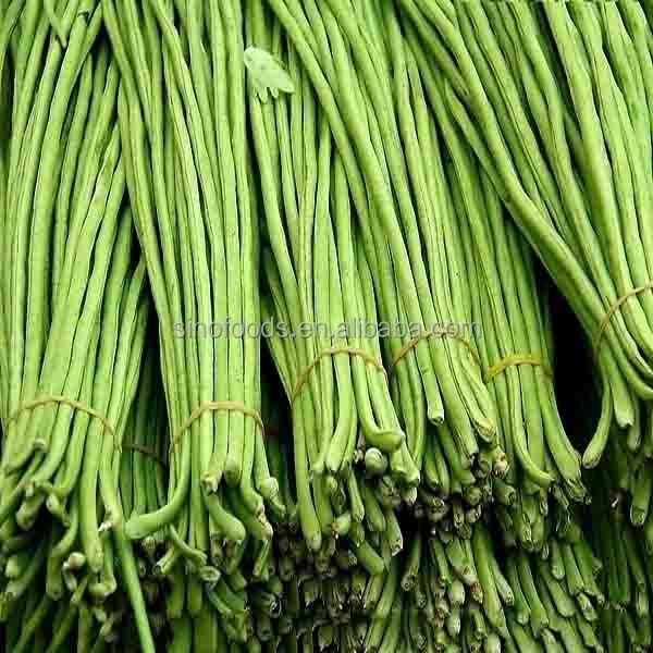 dou jiao semences plante verte long haricot graines fran aises haricots verts graines graines de. Black Bedroom Furniture Sets. Home Design Ideas