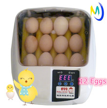 Automatic 12 chicken egg Mini egg Incubator jn12 for sale