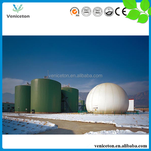 Veniceton 15m3 500m3 1000m3 Portable Biogas Assembled Digester for Pig Farm Cow Farm Chicken