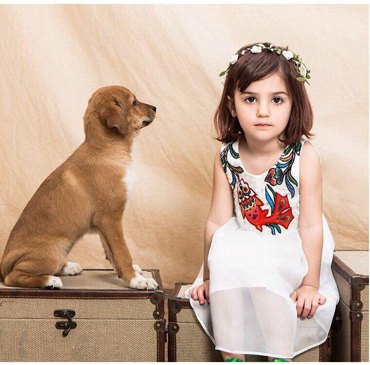 Wholesale Lovely Washable Joining Together Pattern Girl Lace Dress Clothes
