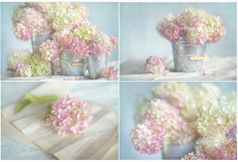 "Lovely Hydrangea 4 Print Set, Rustic Wall Art, Pink, Shabby Chic Decor, Hydrangea Wall Art, Pink Hydrangeas Flowers,Floral Wall Art Prints, 8""x10"""