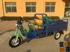 Gasoline passenger 3 wheeler taxi tricycle