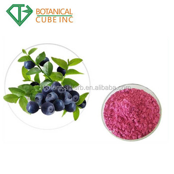 Hot Selling Organic Blueberry Fruit Juice Powder Freeze Dried