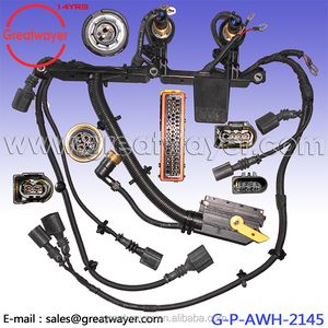Truck Dash Wiring Harness With ECU 55 Pin Connector