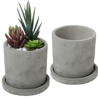 cylinder cement pot indoor concrete flower planter succulent plant planter pot with stray