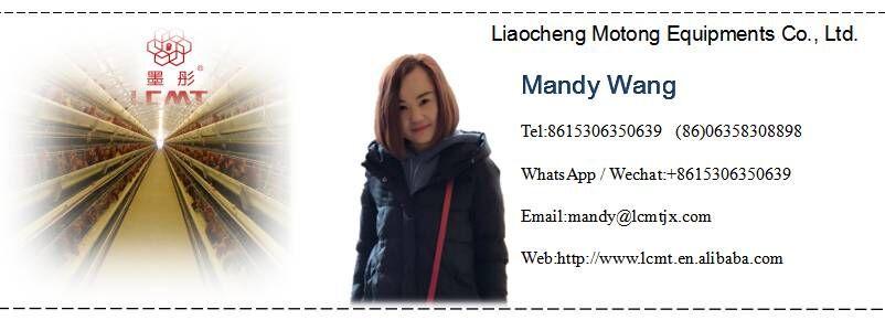 Tam otomatik bıldırcın kafesi yetiştiriciliği ekipmanları Liaocheng, shandong eyaleti odaklanıyor geliştirme
