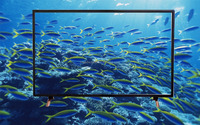 Big size 85 inch Super Slim UHD Quad Core Android Smart LED TV