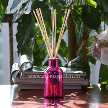 Lovely pink electroplated glass bottle home fragrance reed diffuser with tube box