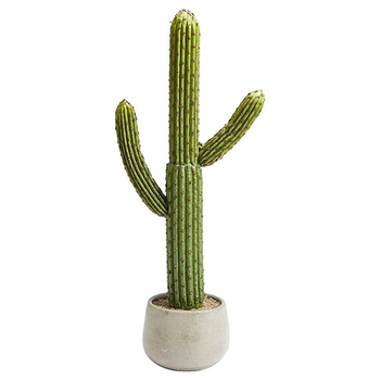 Artificial Evergreen Cactus Plant Decorative Outdoor On High Quality Large Indoor Plants