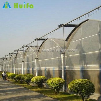 30mx100m Plastic Commercial Used Greenhouse For Sale - Buy Plastic  Greenhouses For Sale,30m X 100m Commercial Greenhouse,Commercial Used  Greenhouse