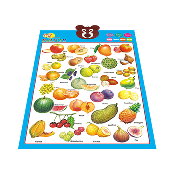 Hot Toys Teaching Wall Chart For Children Wholesale Education Kids