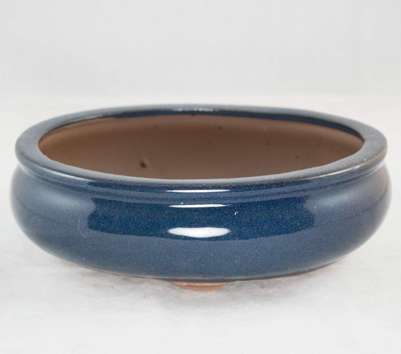"Oval Shohin Bonsai/Cactus & Succulent Pot 8""x 6.25""x 2.5"" - Dark Blue Glazed"