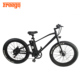 Freego 26 inch fat tire 2000watt exercise long journey mountain motorcycle cheap electric bike kit