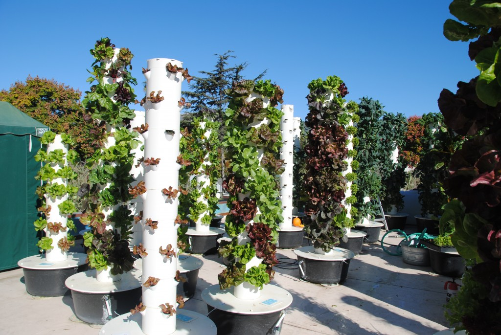 Vertical Hydroponic Growing Aeroponic Tower Farming