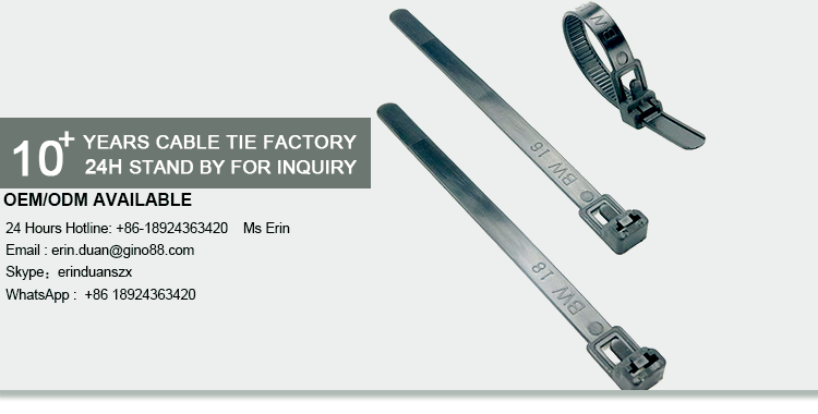 eb762a1105d8 China Manufacture Reusable Plastic Zip Ties - Buy Reusable Zip Ties ...