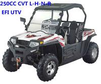 Automatic EEC 250cc UTV/12KW EFI 250cc UTV (TKU250E-2A)