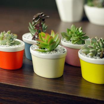Nouveau Design De Forme De Bateau Colore Pots De Fleurs En Ceramique