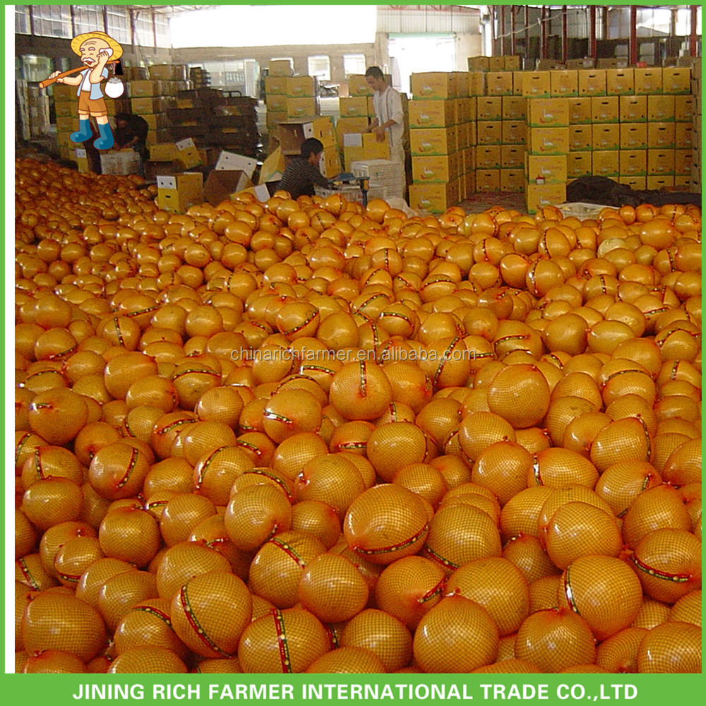 New Product 2017 Fresh Pomelo Bulk With Good Price