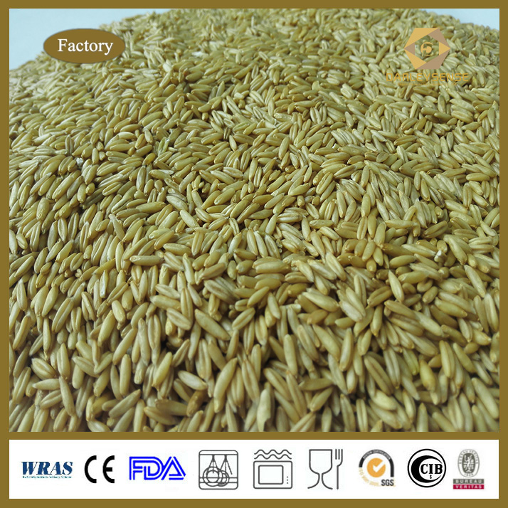 Factory Price for Oats with Good Quality